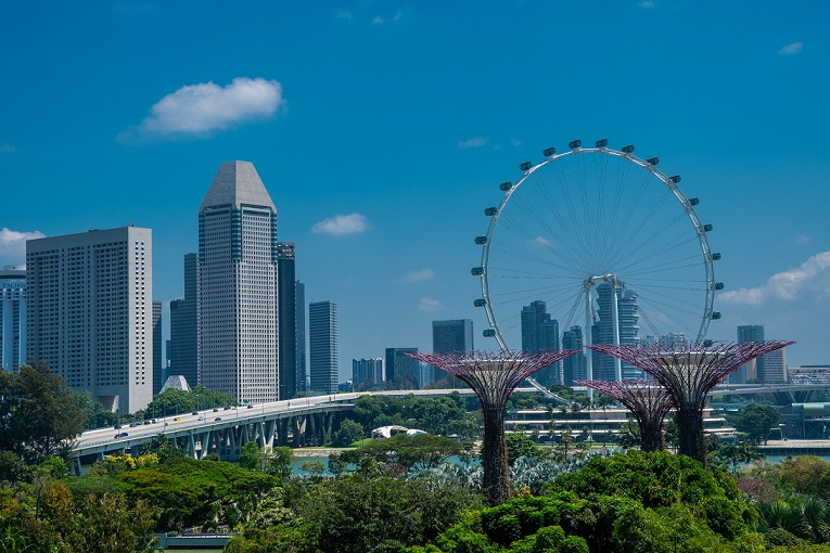 Expand business to Singapore